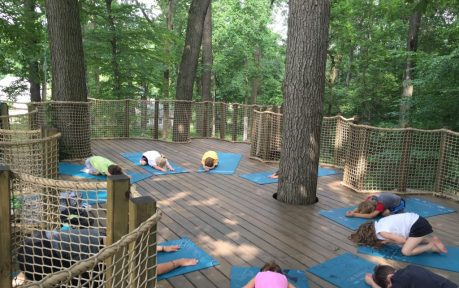 treehouse yoga camp