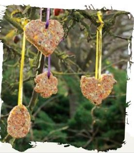 Cookie Cutter Bird Feeder
