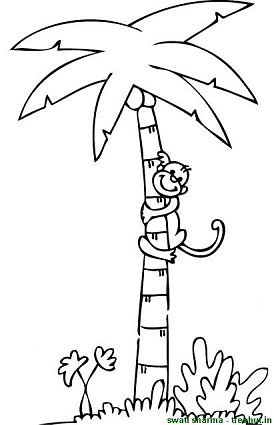 palm tree coloring page palm tree coloring page