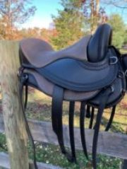 Freeform Pathfinder Treeless Saddle