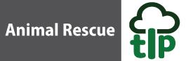 animal rescue brisbane
