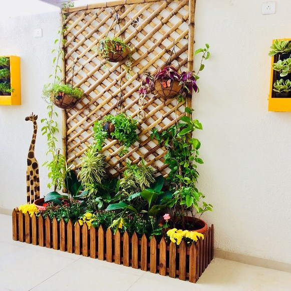 plants for balcony garden