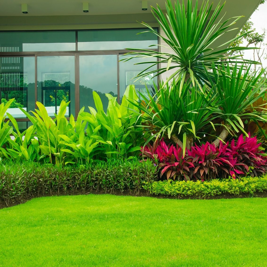 Landscape Consultants in Hyderabad