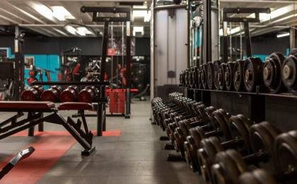 Treeninglife - salle musculation vide entraînement haltères végétale végétarien vegan