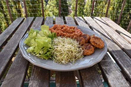 Treeninglife - graines germées assiette musculation végétarien vegan