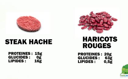 Treeninglife - nutrition sportive vegan viande haricots rouges végétarien musculation sport végétale
