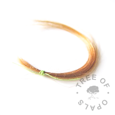 example of the ideal amount of hair to send for lock of hair and fur keepsake jewellery from Tree of Opals