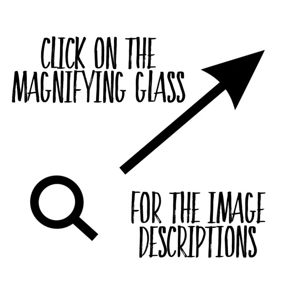 click on the magnifying glass for the image descriptions