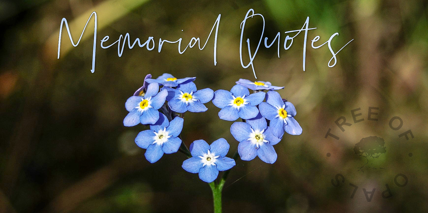 memorial quotes from Tree of Opals for keepsakes and memorials like urns and jewellery