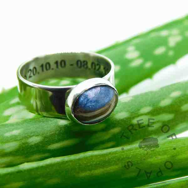 Aegean blue lock of hair ring and an aloe vera. So beautifully shiny with special dates inside