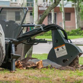 stump removal Norton ma