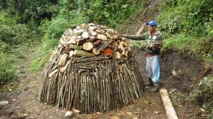 Charcoal production is another cause of forest loss.