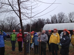 Casey Trees included us in their pruning workshop taught by Barry Stohl, NPS.