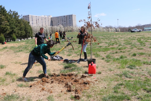 Volunteer ises pick to break ground at spring tree planting.