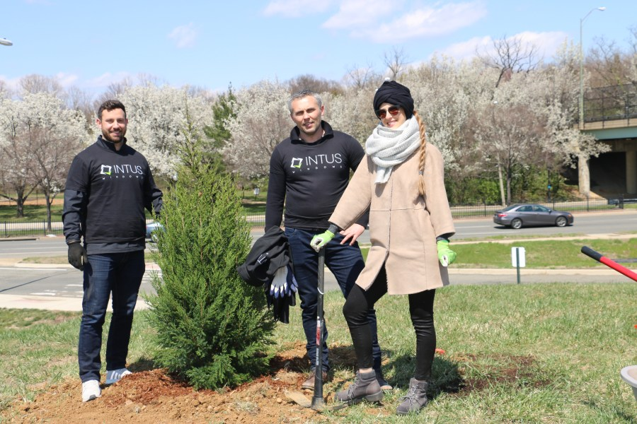 The INTUS planters did it! A 15-gallon Eastern Red Cedar is in the ground. Photo by Tree Stewar4d Jan Hull.