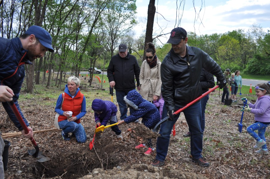 Dads, moms, grandpas and kids all lent a hand. Photo by Tree Steward Bill Anhut.