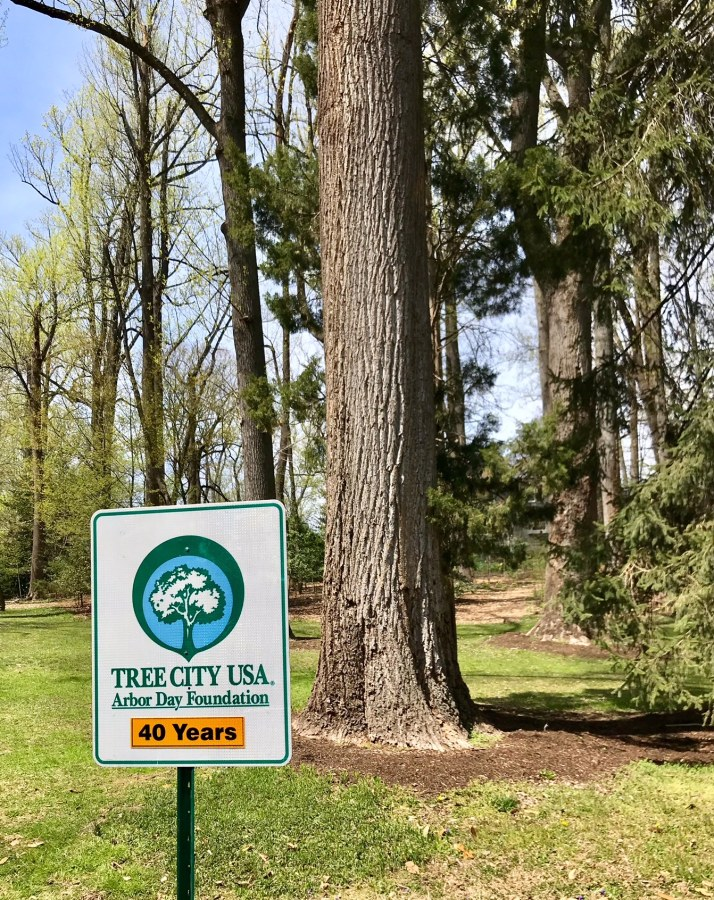 Sigh shows that Falls Church won its 40th consecutive annual title of Tree City USA on April 21.