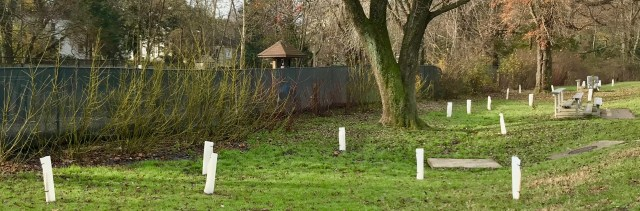 The saplings they planted are shielded by plastic jackets that should deter damage from white-tail deer, rabbits and other critters as the trees grow.