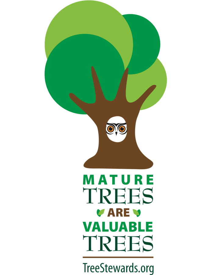 Stylized tree & Mature Trees Are Valuable Trees. TreeStewards.org