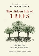 hidden life trees cover