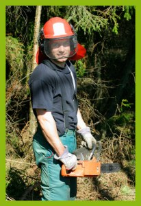 treesurgical.com tree cutter2