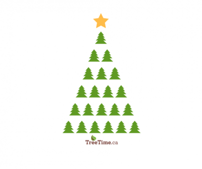Happy Holidays from TreeTime.ca