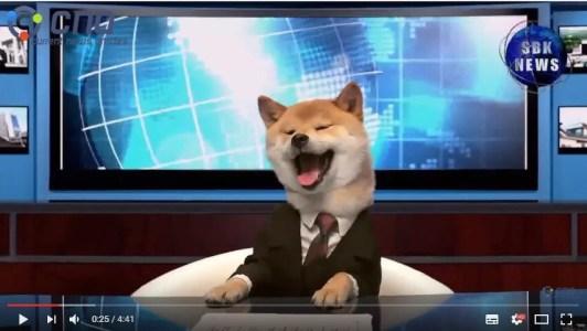 Doggie Headlines