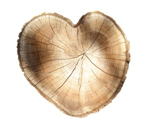 Tree trunk section in the shape of a heart