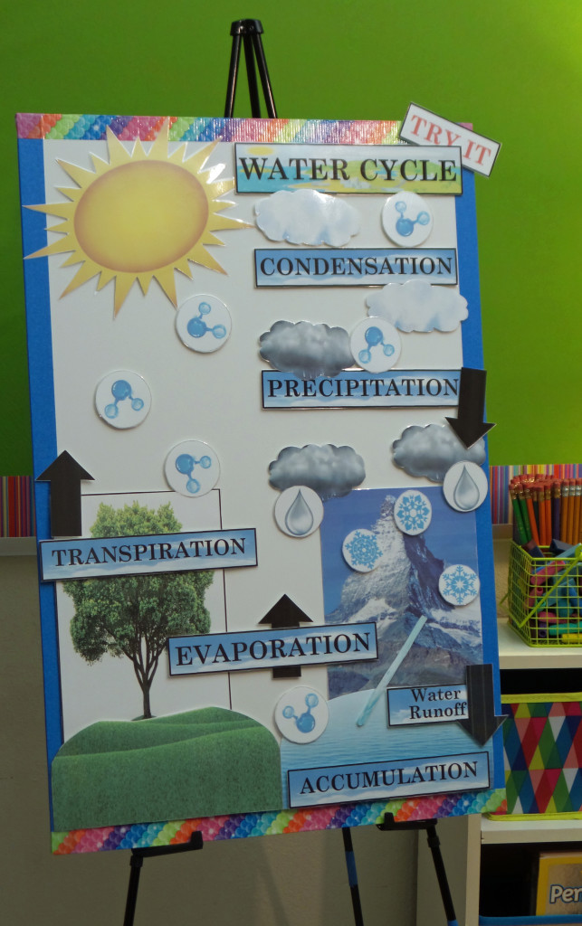 Active Anchor Chart Water Cycle Treetopsecret Education