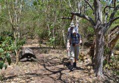 Amazonas 2 och Galapagos 1 458_copy