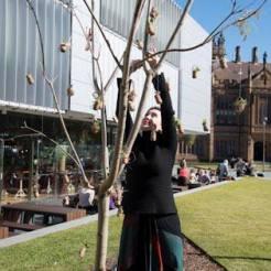 Cork Tree & Jade