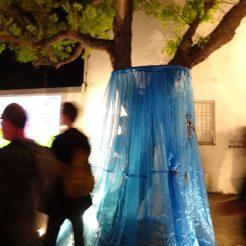 Hugging Tree - Festival Night