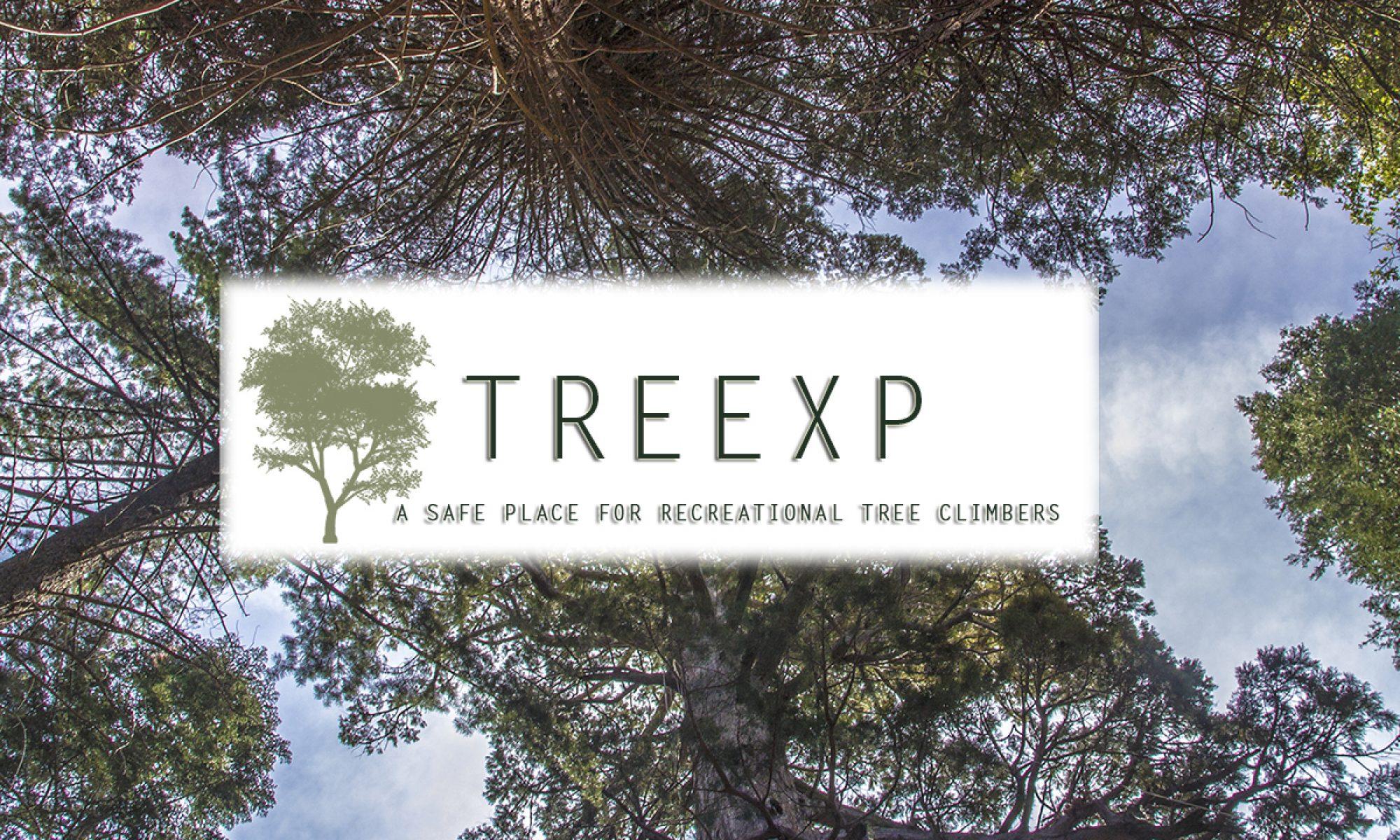 cropped-treexp1.jpg