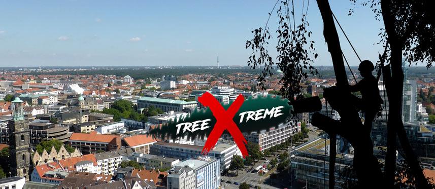 Baumpflege Hannover | treeXtreme Baumkletterer Hannover