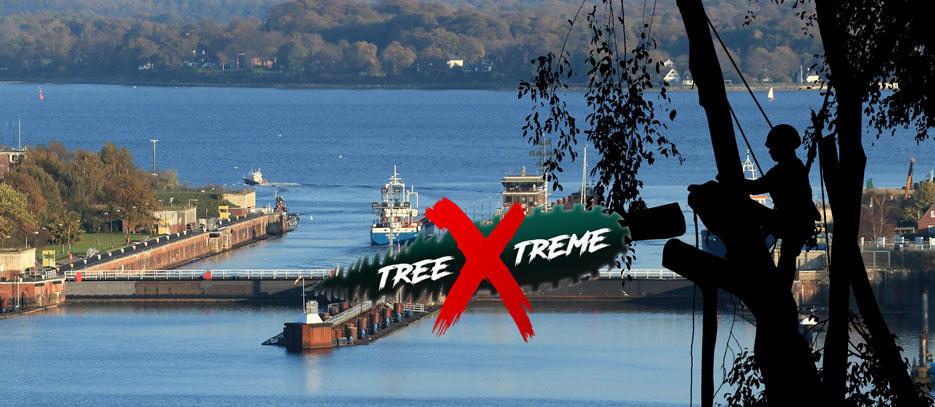 Baumpflege Kiel | treeXtreme Baumkletterer Kiel