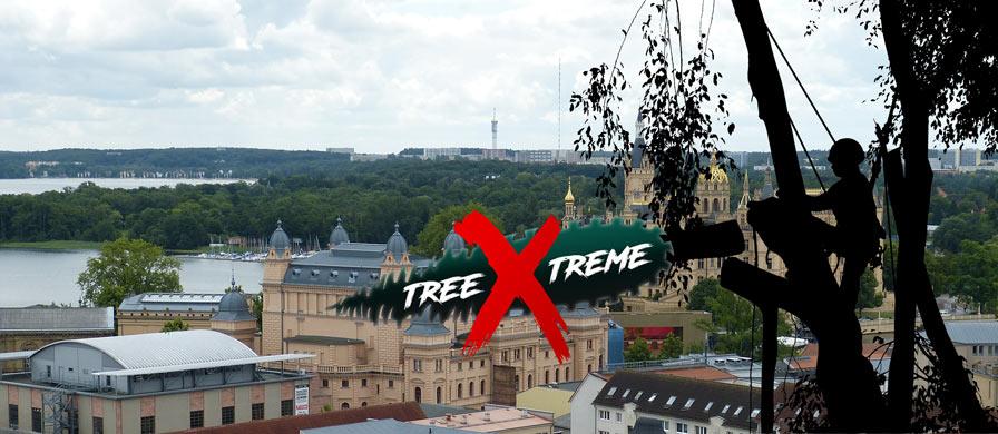 Baumpflege Schwerin   treeXtreme Baumkletterer Schwerin