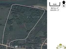Taino Organic Farm satellite view