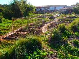 zone-1-garden-from-side-heredade-de-lage, a garden developed by Doug Crouch