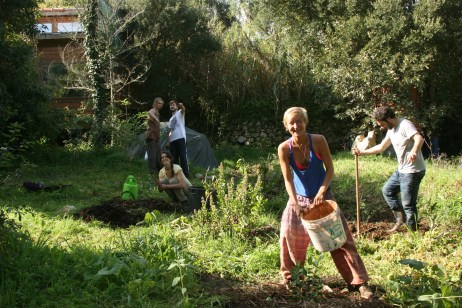 Jessica laying mulch around a feijoa tree in the citrus area at Terra Alta, Sintra, Portugal
