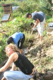 Stream management hands on, gabbions and plantings