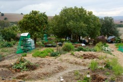 3 pit garden greywater systems and where a food forest will be developed.