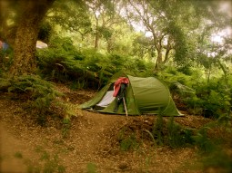 Cork Oak Campground at Terra Alta
