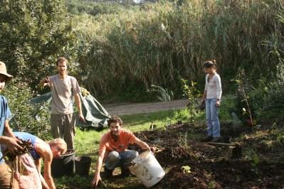 the crew mulching in the mediterranean garden