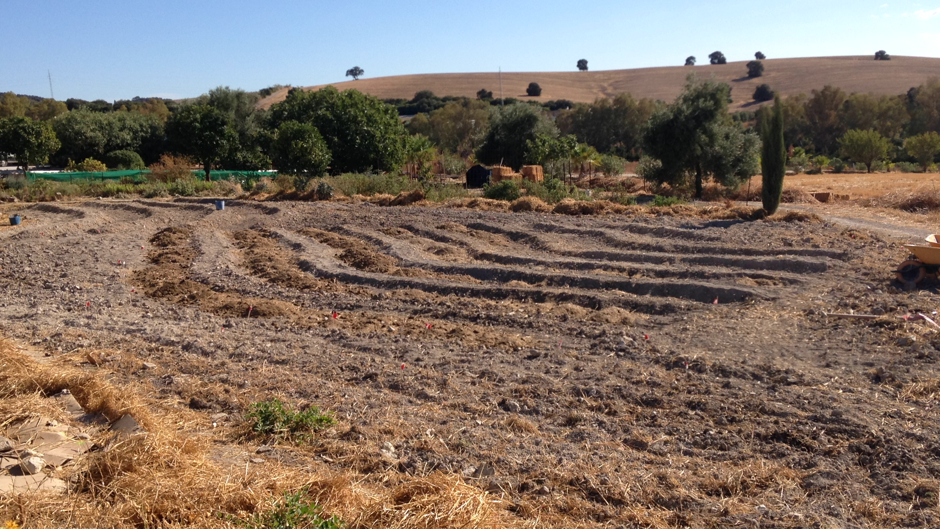 Suryalila Permaculture Project Update- September 12 Day Design and Implementation Intensive