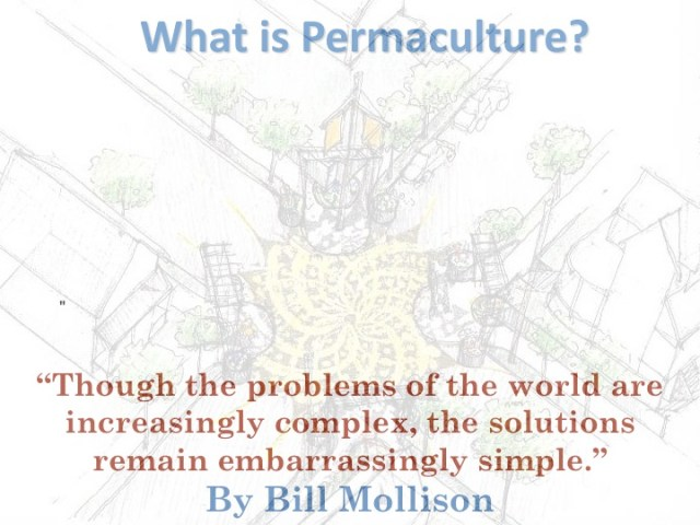 What is Permaculture?