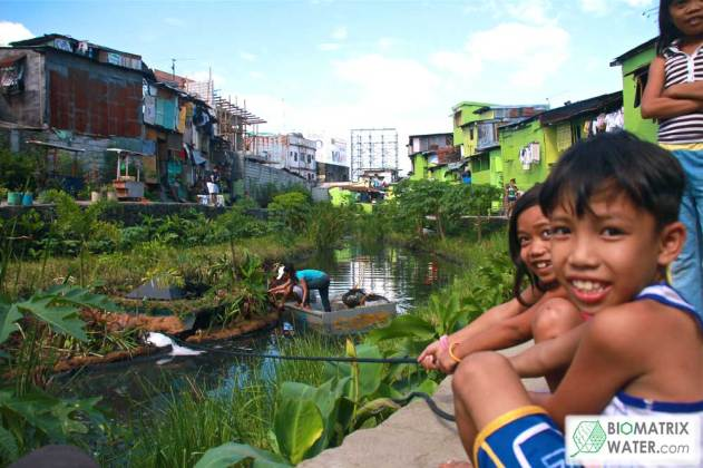 Kids enjoying their backyard with life instead of trash and filth through biomatrix floating islands and filtration system. http://www.biomatrixwater.com/gallery/
