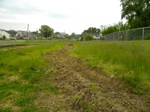hand dug swale, urban greens urban agriculture permaculture cincinnati