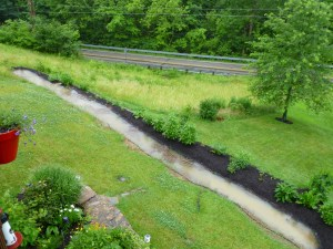 swale with water parkwalk permaculture 2010