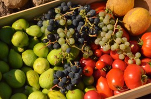 Harvest from Portugal in a sunny year