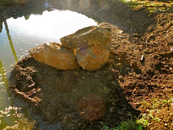 Permaculture microclimate pond with rocks- to warm mountain spring water in Dominican Republic i designed in some rocks to absorb sun energy and radiate out in this pond that was filling.